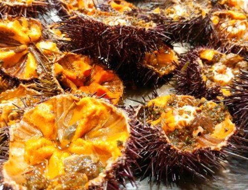 Dónde comer los mejores oricios de Asturias